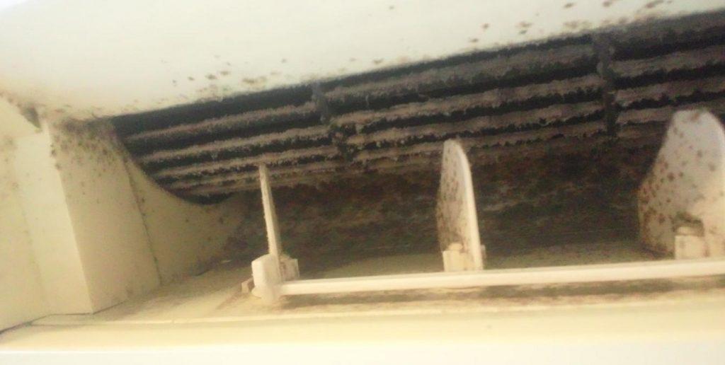 エアコン内部のカビ汚れ