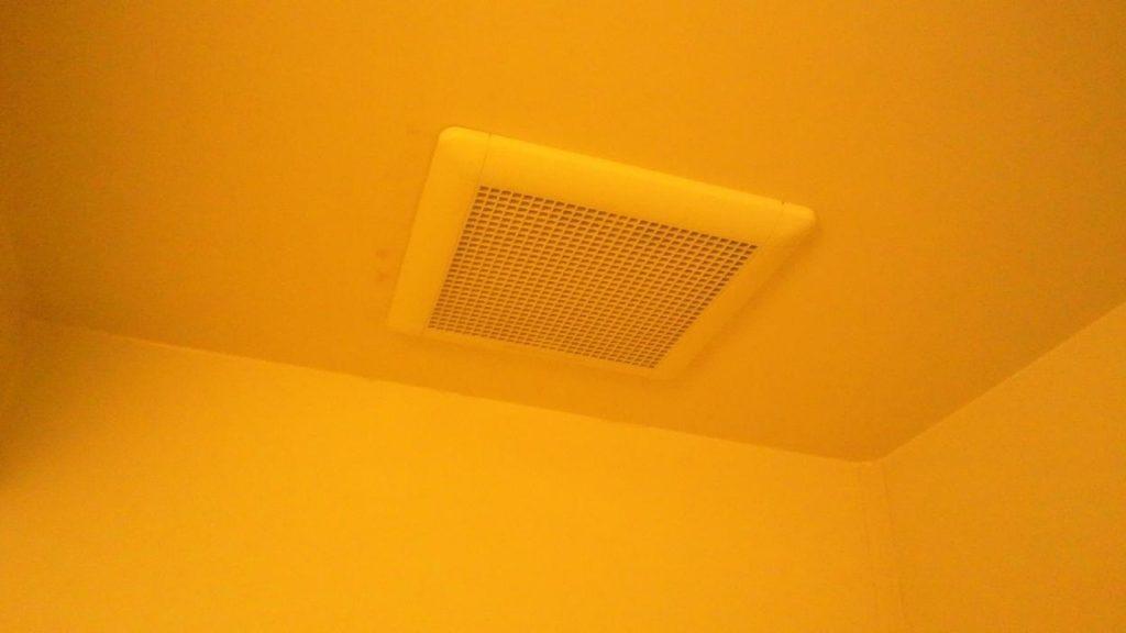 天井のカビ汚れ