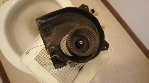 トイレの換気扇のほこり