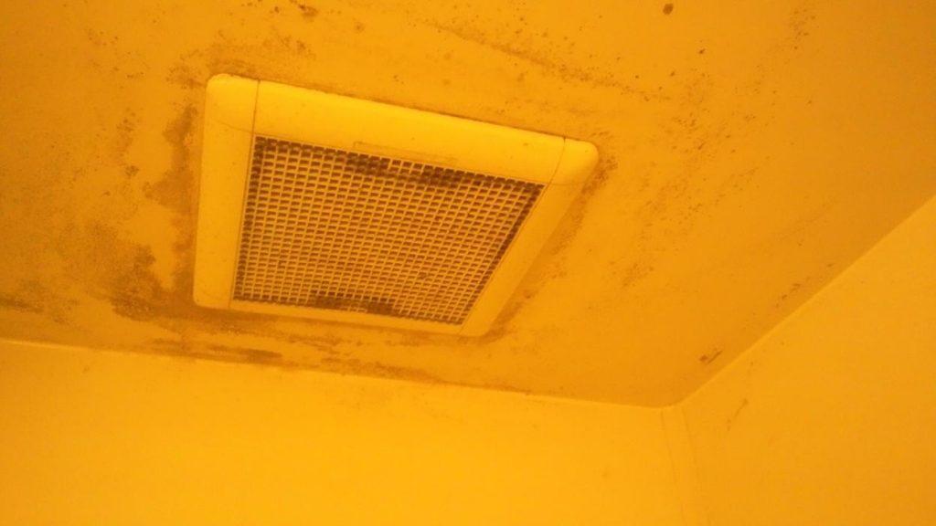 天井のカビ汚れ ハウス エアコン 分解 クリーニング 愛知 名古屋 岐阜 江南 清須 春日井 小牧 一宮 お風呂 浴室