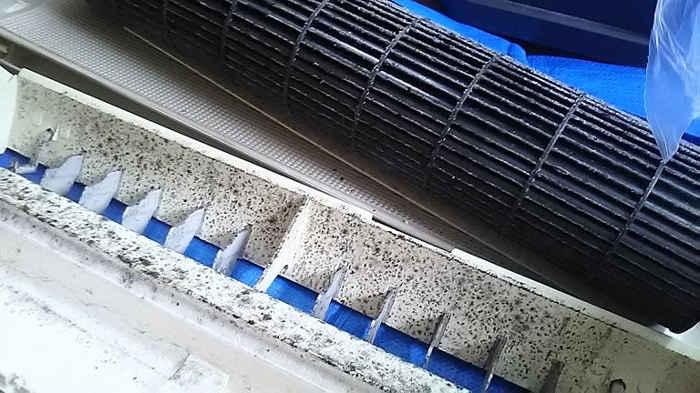 カビ汚れびっしりのエアコン部品